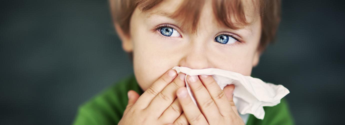 Alergia Poeira
