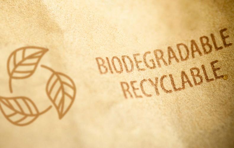Creando productos biodegradables