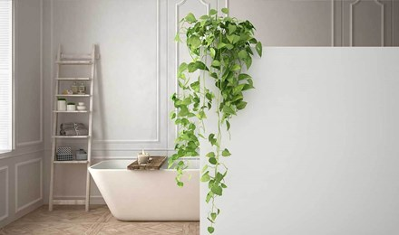 Diseño minimalista elegante de un baño blanco