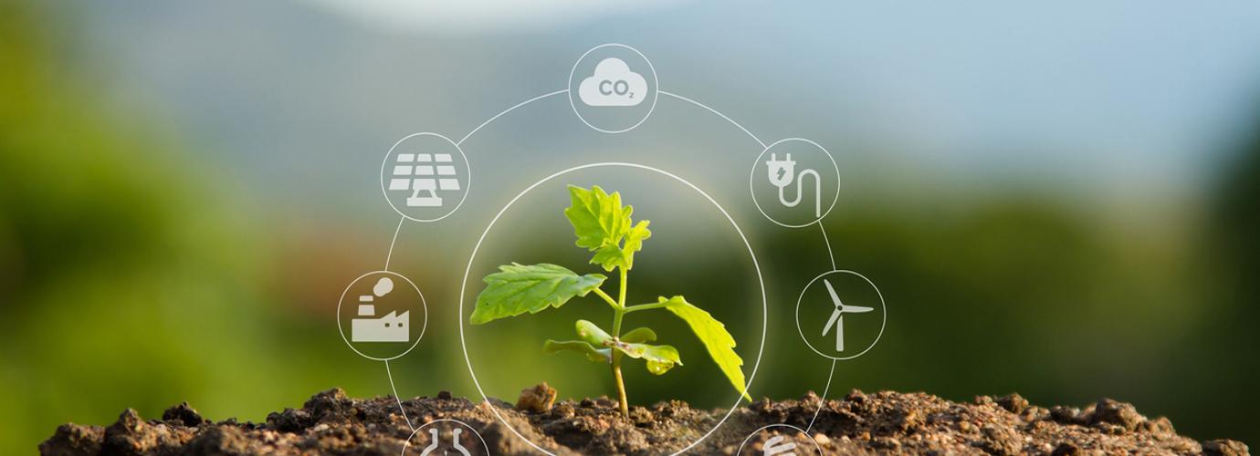 O que é o efeito de estufa e o aquecimento global?